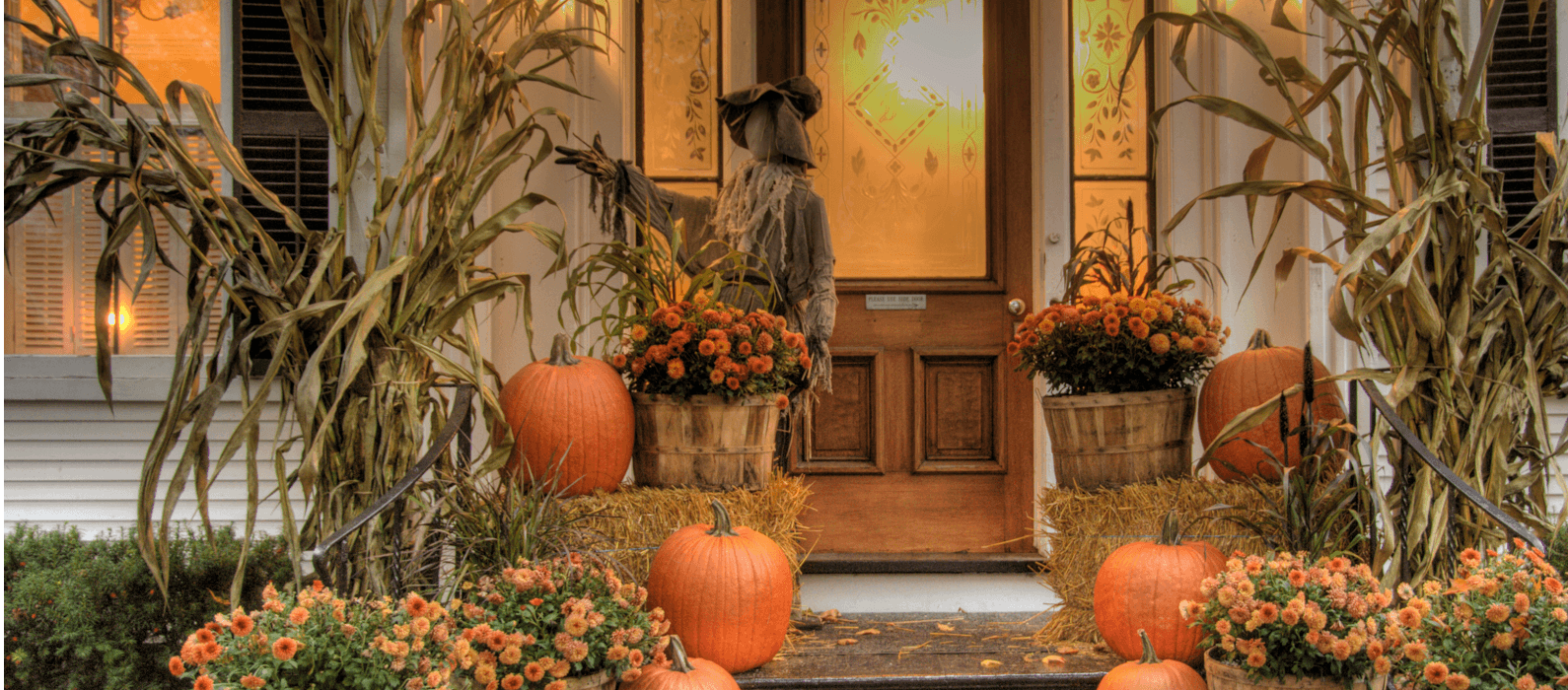 Ideas for Beautiful Fall Decor from Broadview Featured Image
